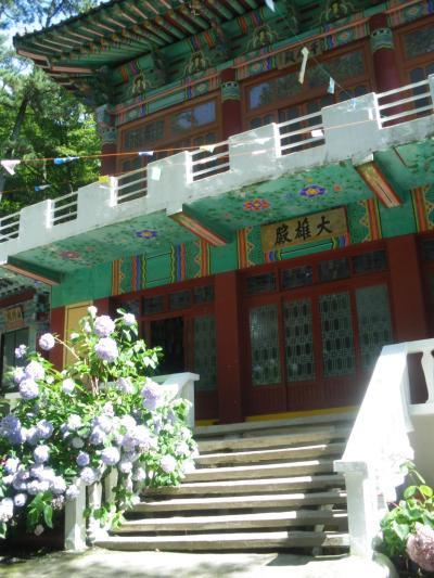 【ビートルでGo!】ふらっと釜山[2] ~チャガルチ市場のイカと太宗山の紫陽花~