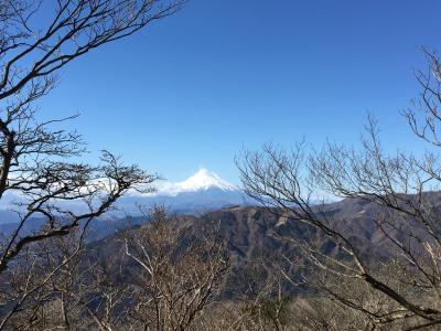 大山登山と神社参拝