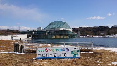 馬頭温泉に行きました。「なかがわ水遊園と日本酒「姿」爆買いの旅」(2019.02・御宿いさみ館)  part1