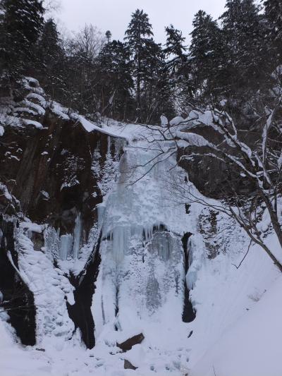 北海道ふっこう割2日目:層雲峡ネイチャーセンター、スノーシュートレッキング