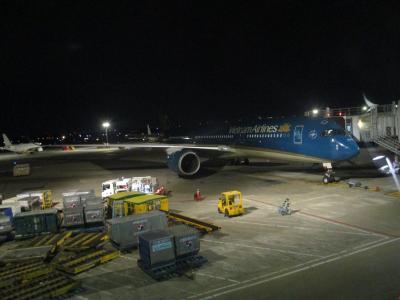 Flight VN302