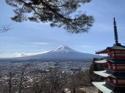 富士山綺麗に見えたよ♪絶景旅館うぶや宿泊