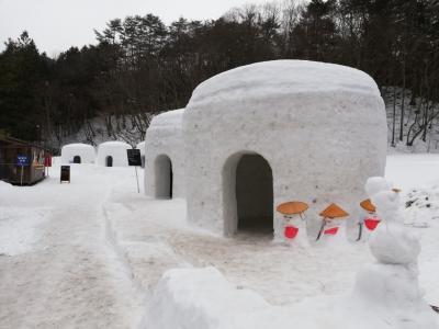日本夜景遺産認定の湯西川温泉 かまくら祭に行ってきました(^^♪ ①