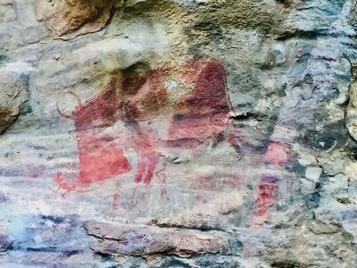 ボーパール日帰り旅行②   ビームベートカーの岩陰遺跡