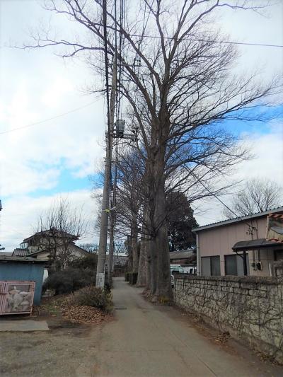 2月12日所沢市南永井付近の風景