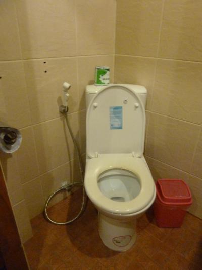 東南アジアのハンドシャワー付きトイレ攻略 夢旅行