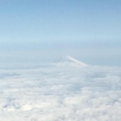 JAL修行を兼ねて山中湖
