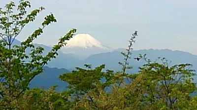 2017.新緑の高尾山