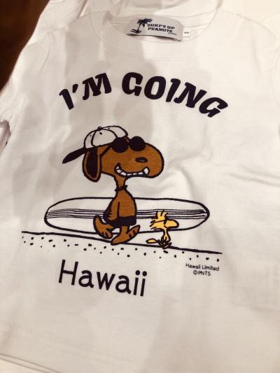 ひとりっぷ in Hawaii P-3