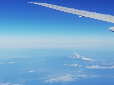 会社の旅行部で福岡から神奈川、栃木、東京を周ってきました。神奈川編