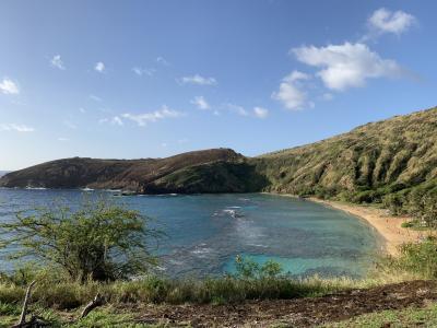 201902 三世代ハワイ② ハナウマ湾&アラモアナセンター