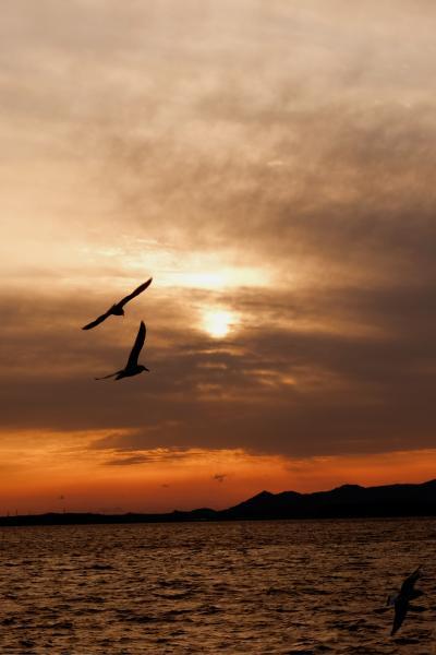 浜松に来たけど、どこに行こうか?ノリで決める10人の1泊2日旅行