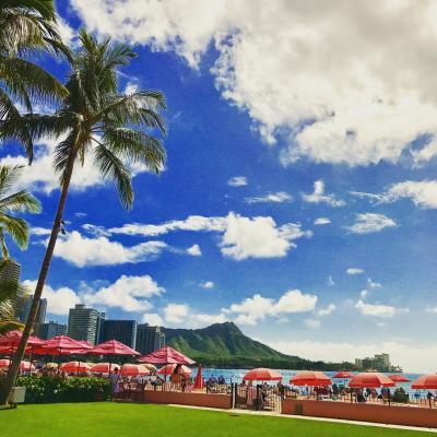 ビジネスクラスで行くハワイ1人旅 帰国日