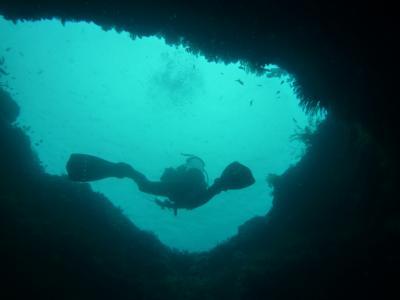 海は生きている~The Living Sea 動画で見てね!