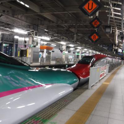 東京個展パーティー。仙台から新幹線と夜行バスで日帰り。