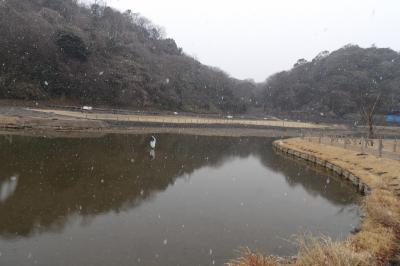 雪の永福寺跡