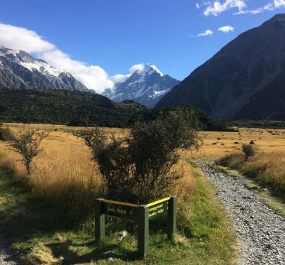 ニュージーランド大自然紀行(2)アオラキ/マウントクック国立公園