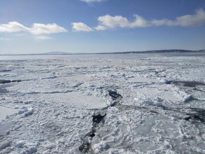 流氷砕氷観光船『おーろら号』に