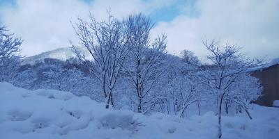 冬の北東北旅