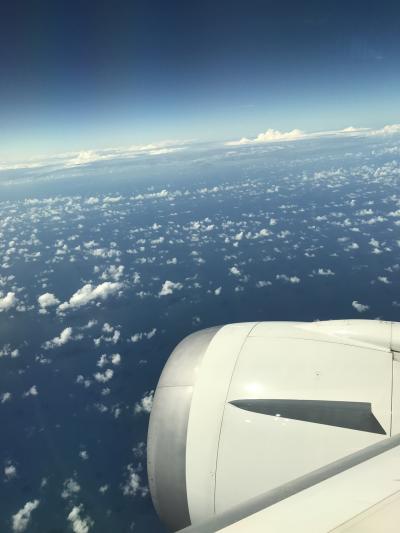シンガポール航空でいくリッツカールトンバリ3泊5日間①