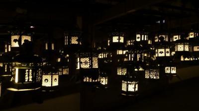 2019晩冬の奈良世界遺産探訪~春日大社・元興寺・興福寺と新薬師寺