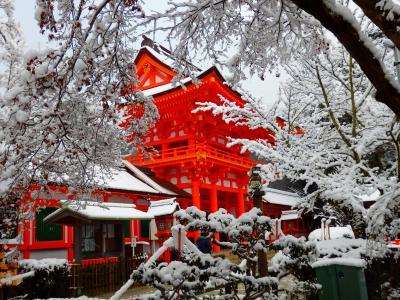 凍える桜並木を抜けて雪の朝を迎えた上賀茂界隈へ