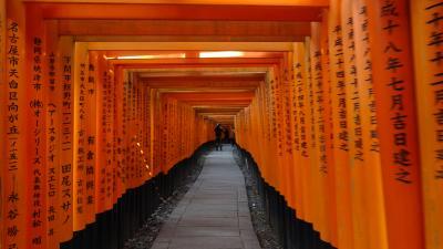 久しぶりに京都に行きました。