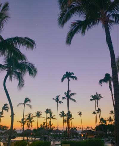オアフとはまた違う魅力!大自然ハワイ島 ☆その1☆ 出発~1日目 ドライブと夕日 編