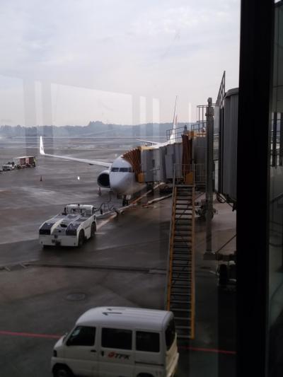 コタキナ・マレーシア航空・メリディアン