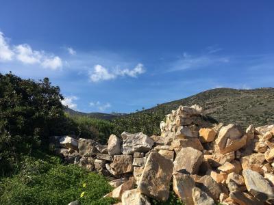 ギリシャ旅行。日本語ガイドプライベートツアーでパロス島の自然を堪能!