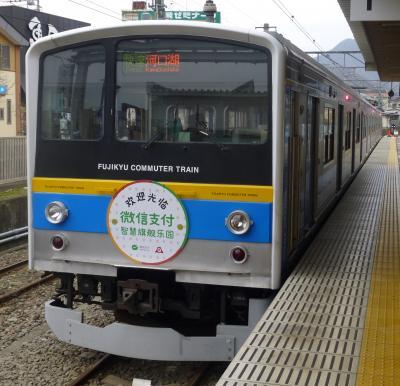 2019年 2月後半 「吉田のうどんきっぷ」を使って・・・・・①日本一ゆたかな通勤電車