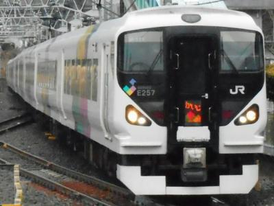 2019年 2月後半 「吉田のうどんきっぷ」を使って・・・・・⑧E257系特急かいじ惜別乗車