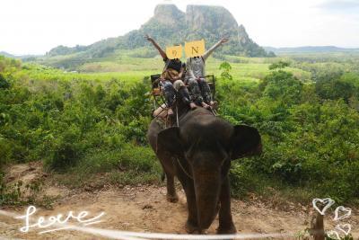 タイに再燃(*>ω<*)。★*゚。*。 大人女子旅 【3】 ゾウさんにはバナナを、大人女子にはグリーンカレーを