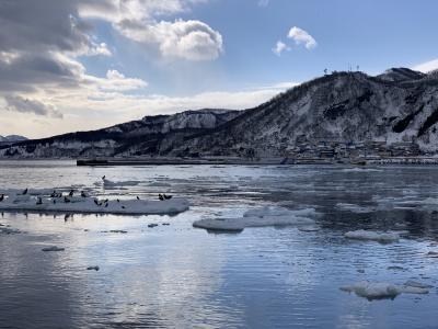 冬の絶景  川湯温泉に泊まる氷平線と羅臼流氷クルーズ  2日間