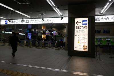 【2019 JGC回数修行 3】伊丹→奄美諸島めぐり→福岡