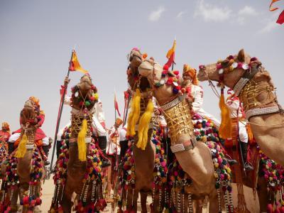 2月の満月*ジャイサルメール砂漠フェスティバル