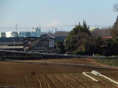 2月21日に見られた富士山