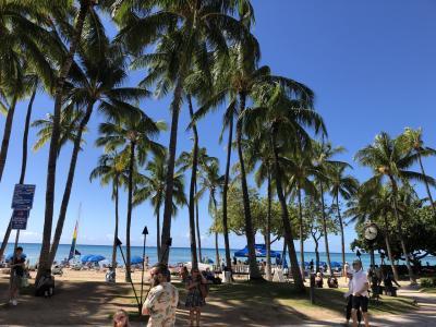 1歳児子連れ旅行は5ヶ月ぶりのまたもやハワイ4