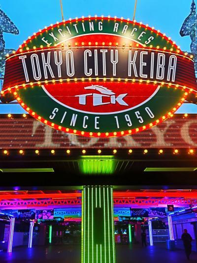 東京 MEGA イルミ-1   光の大祭典/関東最大級!800万球 ☆大井競馬場18時:1番に入場