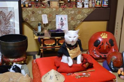 京都☆われらが総本山 猫猫寺(にゃんにゃんじ) 2月22日は猫の日(=^・^=)