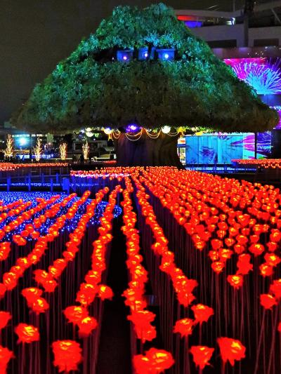 東京 MEGA イルミ-9  大きなTREE・バラは制御LED光 ☆3Dプロジェクションマッピングも