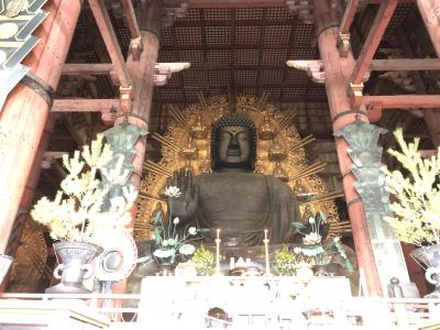 何十年振りの奈良探索(東大寺、春日大社)