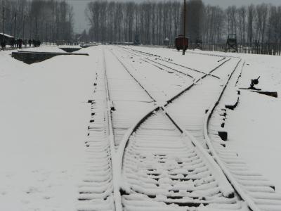 冬のポーランド8日間の旅 (5) クラクフ~オシフィエンチム~クラクフ