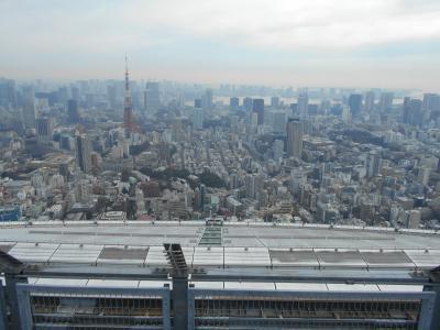 六本木ヒルズ 屋上展望台から伊藤忠青山アートスクエアへ