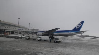 北海道旅行1日目前半 第70回さっぽろ雪まつり