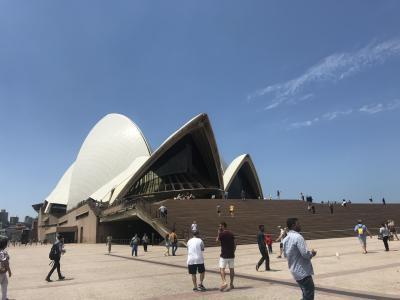 二度目のシドニー