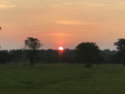 【現地速報】モルディブ・スリランカ遠征 その10 初上陸スリランカ 6つ目の街 Anuradhapura!