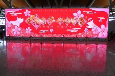 1歳4か月の娘と旧正月上海5★キャセイ利用 上海から香港へ