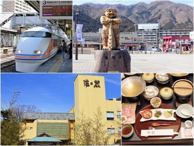 平成最後、今年の冬も鬼怒川温泉の旅 1 (2019.02.22~23)