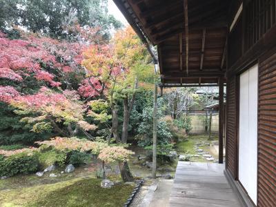 秋の京都は凄かった・・・(祖父母の改葬 納骨へ)